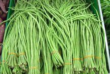 peralatan pertanian