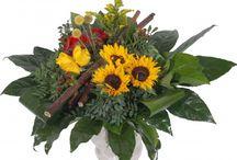 Zonnebloemen / Zonnebloemen bezorgen, Zonnebloemen boeketten en ons mooie zonnebloemenveld. En nog wat mooie plaatjes van zonnebloemen ;-)! / by verstuureenbloemetje.nl