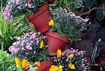 Garden / by tracy smith