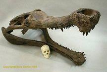Dinobeasts