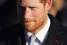 The Ginger Prince & his Beard