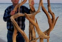 Driftwood treasures