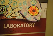 Curious Cam / Have you met Cam?  Cam is a chameleon who is extremely curious about the world and wants to see all your exploration, experiments, and science discoveries in the lab, at work, in the classroom, or in the field! http://www.crscience.org/camadventures