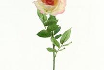 Roses - Permanent Botanicals