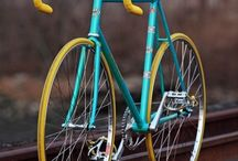 Fixies / by Gareth Pon