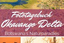 Afrika / Egal ob Rundreise oder auf Safari, die schönsten Reisen in Afrika!