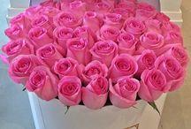 virág dobozok