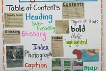 Expository Text Features / by Pam Christopherson