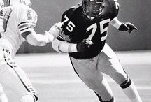 Pittsburgh Steelers / Football / by Theresa Norris