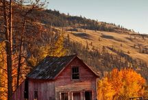 Tree house&barns