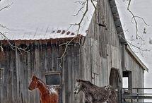 Pony Express Post Annex