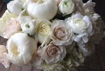 Wedding Flowers / by Diana Evans