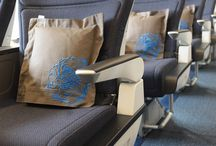 ✈ Airlines Fancy Seats ✈ /  For advance tickets booking in cheap rate, Please check out it: https://whiskr.net/
