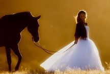 my passion....horses / love love love  / by Vicki Ferguson