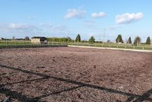 Manege with Floodlights / All properties for sale with Rural Scene