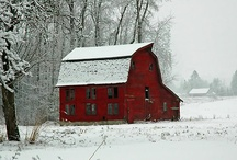 Barns are ART! / by Amy Stout