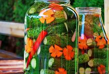Recipes: Pickles & Canning