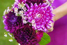 Big Brother Big Sister Gourmet Dinner Florals Design Inspiration