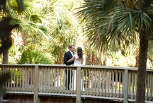 Wedding Ceremony/Reception Shots / by Lesya Iwaskewycz