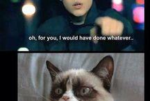 Funny Justin Bieber