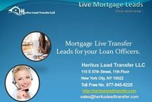PPT on Mortgage Leads / Slide show on mortgage leads