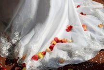 Wedding Dresses / Wedding Dresses Available At Bridalxoxo.com, a Las Vegas Bridal Boutique