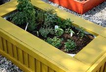 Gardening/Bath/Veges