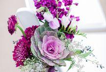 Lavender & Purple