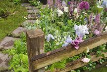 jardino