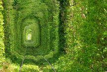 Places / Lugares de sonhos...