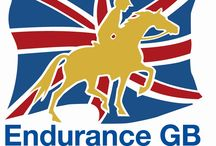 Endurance riding in England and Wales / Useful information about endurance rides in England and Wales