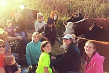 Corn Maze, Hay Rides, and other Farm Events