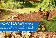 Permaculture / by Inhabitat