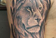 ライオン 虎