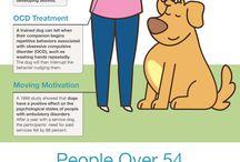 тренинг собак