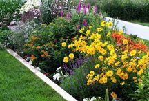 Flower Garden Inspirations
