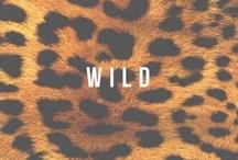 Wild  / Animal prints