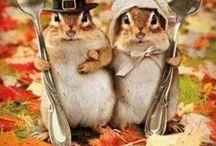 Thanksgiving / by Jennifer Keyser