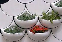 Garden & Plant!