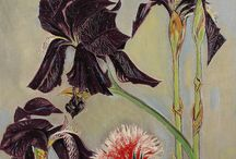 flowers / depictions of flowers and botanicals, paintings, drawings, photographs, and vintage prints