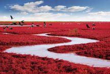 most beautiful photos of wonderful china