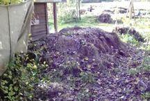 Gardens ~ compost