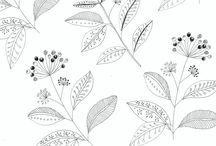 BL motifs for ss18