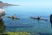 2015 AdventureWeek Baja California Sur / Discover Baja California Sur — The Aquarium of the World — March 7-15, 2015 Join the ATTA on a nine-day familiarization trip designed especially for adventurers to Baja California Sur.