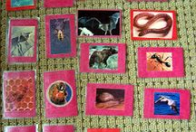 montessori animal story cards