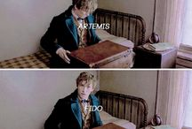 Fantastic Beasts and Where to Find Them ☆
