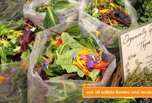 Edible, Ornamental, Floral