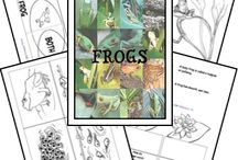 Frogs for Kids