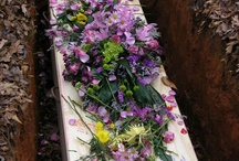 Natural burials & Alternate cremation