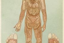 fragmented body